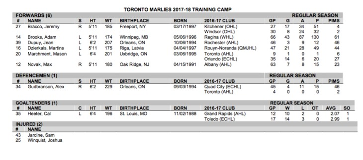 Training Camp Roster - 10/02/17