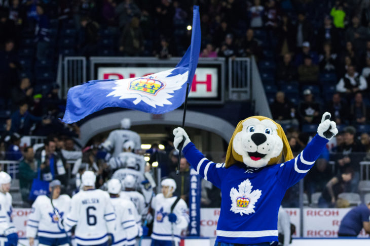 Duke waves a Marlies flag at centre ice following a team win